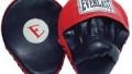 Everlast Mantis Punch Mitts Review