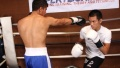 How to Slip Punches