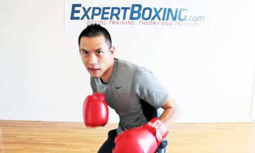 Boxing Head Movement