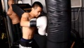 Joint Strength and Punching Power