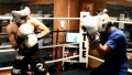 Boxing Tips for Slipping