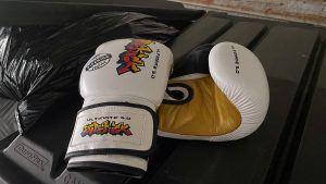 Sidekick Boxing Gloves Review