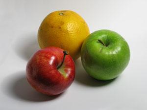 A Healthy Boxer's Diet