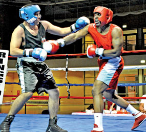 Ready for Amateur Boxing